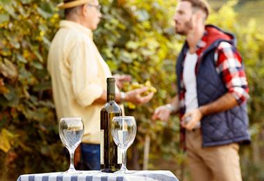 degustation-vins-provence-cote-azur-toulon